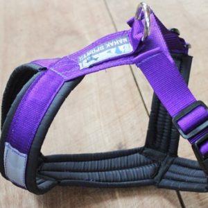Nahak Sports - Harnais ajustable (8 à 25 lbs)